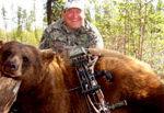 Hunting Brown Bear