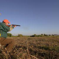 Dove hunting near DFW Metroplex